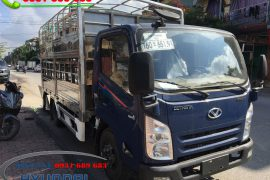 Xe IZ65 chở lợn